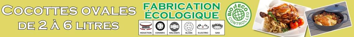 Cocotte special induction et four