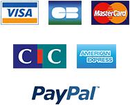 Carte Bancaire Visa CB Master Card